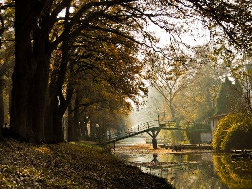 Herbstimpressionen am Wasser
