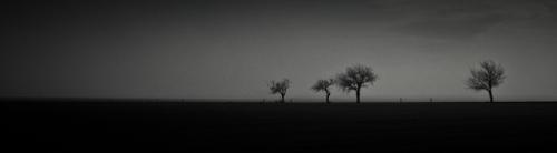 Mansfelder Land - Nebel